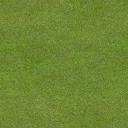 golf_fairway1 - golf_sfs.txd
