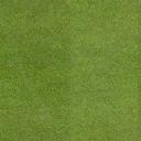 golf_greengrass - golf_sfs.txd