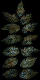 CJ_PLANT - GTA_brokentrees.txd