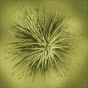 sm_josh_leaf - gta_deserttrees.txd