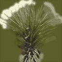 sm_minipalm1 - gta_deserttrees.txd