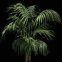 planta256 - gta_potplants.txd