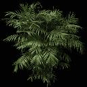 fuzzyplant256 - gta_potplantsaa.txd