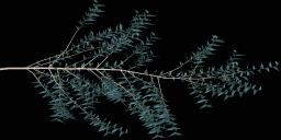 spruce1 - gtatreesh04.txd