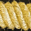 Gym_rope - intring_gymint3.txd