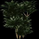 plantc256 - kbplantssmz.txd