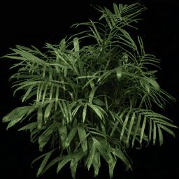 foliage256 - laealpha.txd