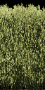hedgealphad1 - laeroads2s.txd