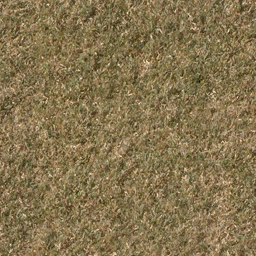 grassdead1 - lahillslaroads.txd