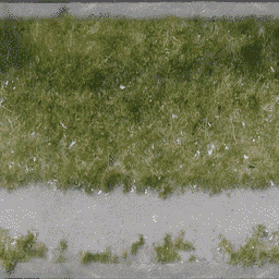 grasspave256 - landhub.txd
