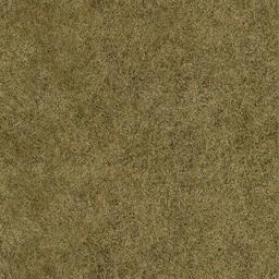sl_sfngrass01 - lanroad.txd