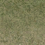 grasstype5_4 - lod_countn2.txd