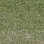 des_dirtgrassmix_grass4 - LODcunty.txd
