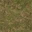 forestfloor256 - LODcunty.txd
