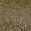 forestfloor_sones256 - LODcunty.txd