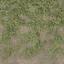 grass4dirtytrans - LODcunty.txd