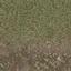 grasstype3dirt - LODcunty.txd