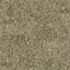 grasstype5 - LODcunty.txd