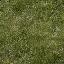 grassgrn_lod - lodvgsslod02.txd