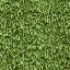 veg_hedge1_lod - lodvgsslod02.txd