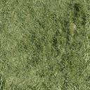 Bow_church_grass_alt - lombard.txd