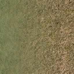 grassdead1blnd - mullho03a_lahills.txd