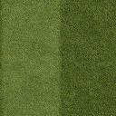 Grass_lawn_128HV - nicepark_sfe.txd