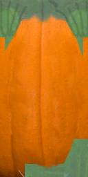 pumpkin01 - pumpkin01.txd