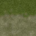 Grass_dirt_64HV - santavenice3.txd