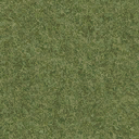 grasstype4 - silconland_sfse.txd