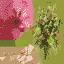 flowert - stalks.txd