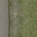 dt_road2grasstype4 - sv_ground_sfs.txd