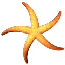 ab_aqua_starfish - traidaqua.txd