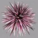 ab_aqua_urchin - traidaqua.txd