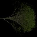 Elm_treegrn2 - tree1.txd