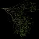 Elm_treegrn4 - tree1.txd