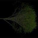 Elm_treegrn2 - tree1prc.txd