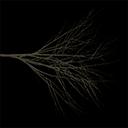 elmdead - tree2.txd