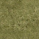 Grass - vegashse8.txd