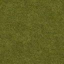 grassdry_128HV - vegassvehse7.txd