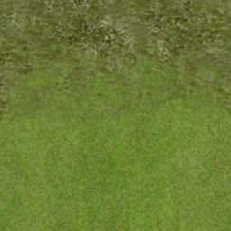 golf_fairway3 - vgnglfcrse1.txd
