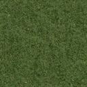 grasstype10 - vgnvrock.txd