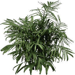foliage256 - vgsebushes.txd