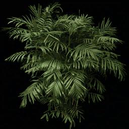 fuzzyplant256 - vgsebushes.txd