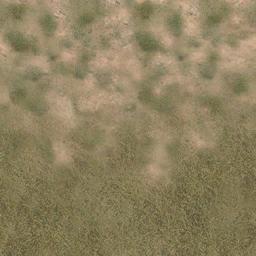des_grass2scrub - vgsecoast.txd