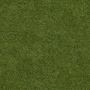 Grass_128HV - vgwestcoast.txd