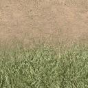 des_dirt1_grass - vgwestland.txd