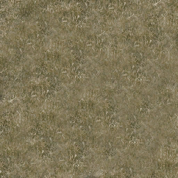 grassgrnbrn256 - vgwestland.txd