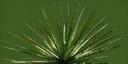 sm_Agave_1 - wiresetc_las2.txd