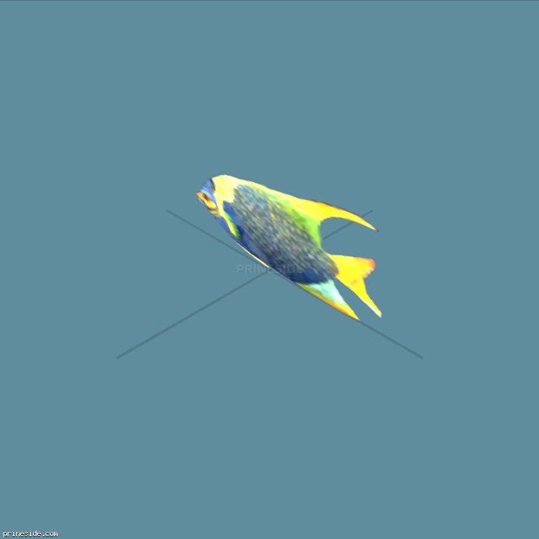 fish2single [1600] на темном фоне